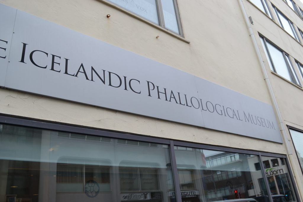 penis_museum_iceland