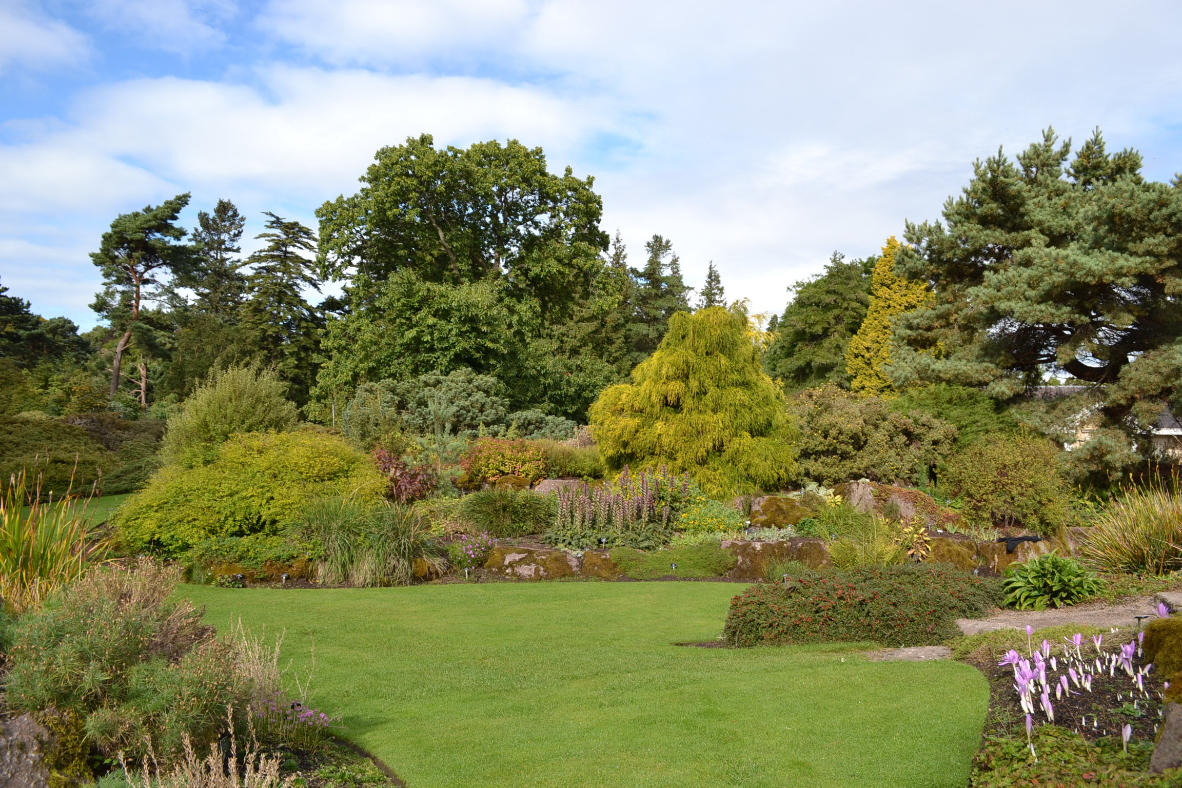 Edinburgh_botanical_garden