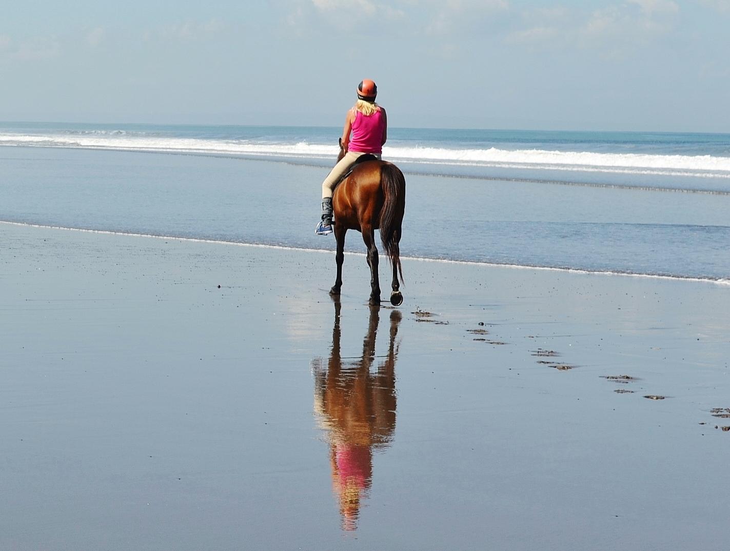 Bali Horse Riding | Bali Solo Travel