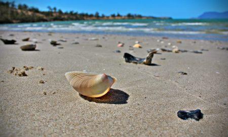 Australia beach | Backpacking in Australia | Solo Female Travel Blog